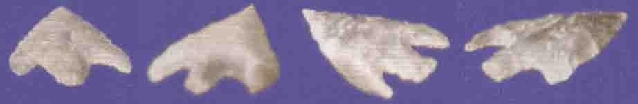 Boscombe Bowmen Arrowheads